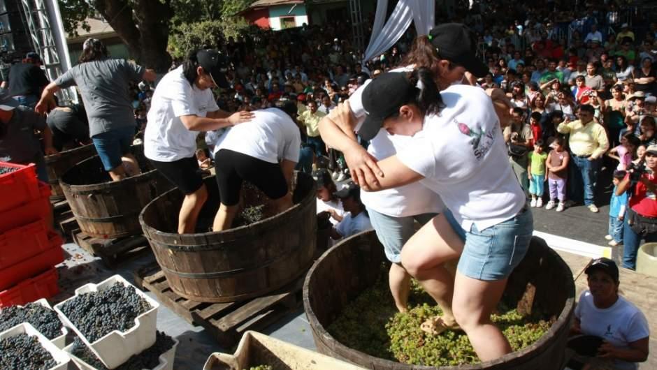 El Amaule, Noticias de Curicó y Talca